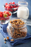 Homemade healthy granola in glass jar and berries Stock Photography