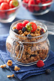 Homemade healthy granola in glass jar and berries Royalty Free Stock Image