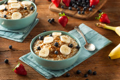 Homemade Healthy Steel Cut Oatmeal Stock Images