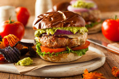 Homemade Healthy Turkey Burgers Royalty Free Stock Image