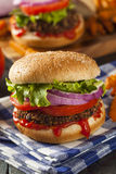 Homemade Healthy Vegetarian Quinoa Burger Stock Images