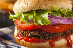 Homemade Healthy Vegetarian Quinoa Burger Royalty Free Stock Image