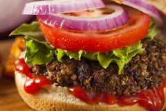 Homemade Healthy Vegetarian Quinoa Burger Stock Photos