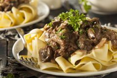 Homemade Hearty Beef Stroganoff Royalty Free Stock Photography