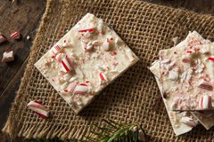 Homemade Holiday Peppermint Bark Stock Photo