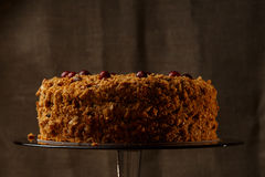 Homemade honey cake with nuts and spices. Royalty Free Stock Image