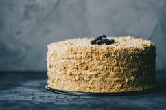 Homemade Honey Cake stock photos