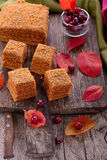 Homemade honey cakes with fresh cranberries Royalty Free Stock Photos