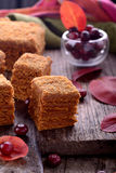 Homemade honey cakes with fresh cranberries Royalty Free Stock Image