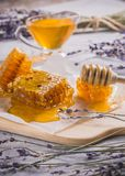 Homemade honey in combs on herbs. Delicious homemade honeyin combs on meadow herbs Stock Photography