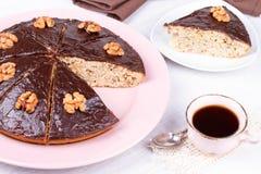 Homemade honey walnut pie Royalty Free Stock Photography