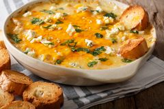 Homemade hot buffalo chicken dip with crostini close up in bakin Royalty Free Stock Photos