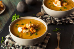 Homemade Hot Butternut Squash Soup Royalty Free Stock Photos