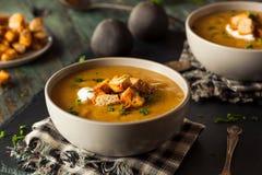 Homemade Hot Butternut Squash Soup Stock Photography