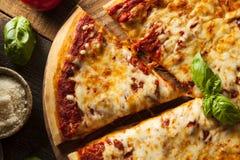 Homemade Hot Cheese Pizza Stock Photos