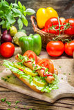 Homemade hot dog with fresh ingredients Royalty Free Stock Images