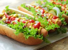 Homemade hot dogs Royalty Free Stock Photo