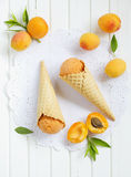 Homemade ice cream stock photo