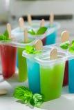 Homemade ice cream with fruity yogurt Stock Images