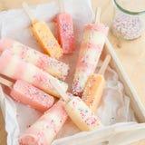 Homemade ice cream popsicles Stock Image