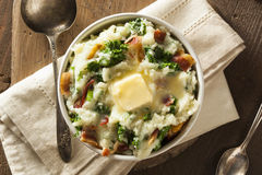 Homemade Irish Potato Colcannon Stock Image