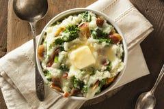 Homemade Irish Potato Colcannon Stock Image