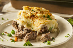 Homemade Irish Shepherd's Pie Stock Images