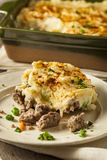 Homemade Irish Shepherd's Pie Stock Photos
