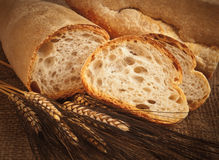 Free Homemade Italian Bread With Ears Of Wheat Royalty Free Stock Images - 44650189