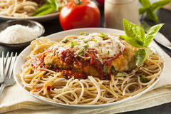 Homemade Italian Chicken Parmesan Royalty Free Stock Photos
