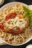 Homemade Italian Chicken Parmesan Stock Photos