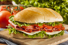 Homemade Italian Sub Sandwich Stock Images