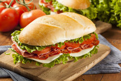 Homemade Italian Sub Sandwich Stock Photography