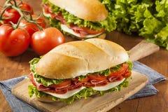 Homemade Italian Sub Sandwich Royalty Free Stock Photos
