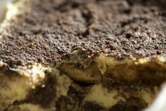 Homemade Italian tiramisu Royalty Free Stock Photo