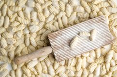 Homemade  Italian Traditional Gnocchi Royalty Free Stock Image