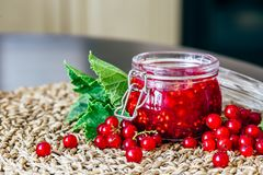 Homemade Jam with Red Currant. stock photos