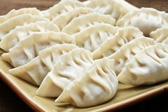 Homemade japanese gyoza dumplings uncooked. Stock Photography