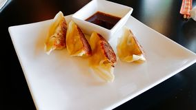 Homemade Japanese pork dumplings royalty free stock photography