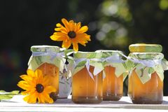 Homemade jellies with flowers Stock Photo
