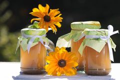 Homemade jellies with flowers Royalty Free Stock Photos