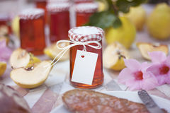 Homemade Jelly Royalty Free Stock Photo