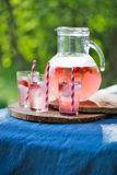 Homemade juice Royalty Free Stock Images