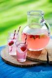 Homemade juice Stock Photo