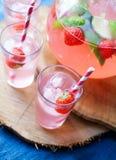 Homemade juice Stock Photography