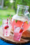 Homemade juice Royalty Free Stock Photography