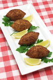 Homemade kibbeh, middle eastern food Royalty Free Stock Images