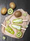 Homemade kiwi ice cream Stock Photos