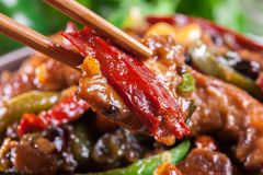 Homemade Kung Pao chicken with peppers and vegetables. Traditional sichuan dish Royalty Free Stock Photos