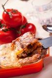 Homemade lasagna Royalty Free Stock Image